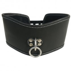 Obroża - Sportsheets Edge Soft Leather Posture Collar